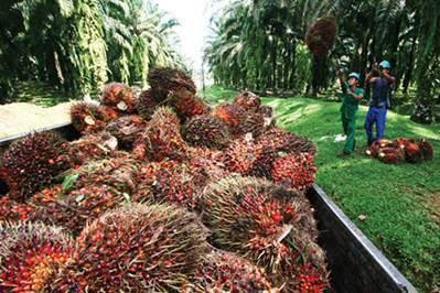 Lowongan Kerja PT. Duta Swakarya Indah Pekanbaru Desember 2018