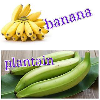 buah-buahan 5