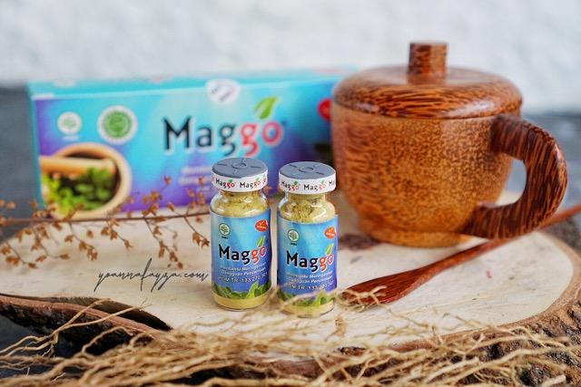 Maggo obat alami untuk sakit maag