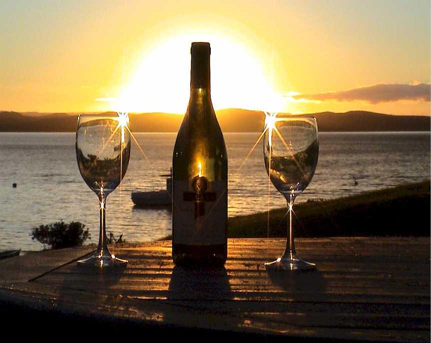 Una copa de champan para dunia montenegro - 2 part 5