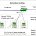 Cisco CCNA Basics VI: Introduction to Extended VLANs