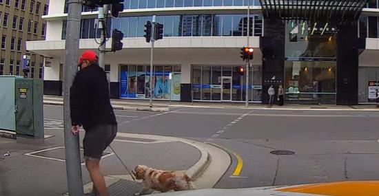 Pedestre provoca motorista Australia - Instant karma 2