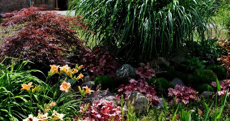 Pflanzen als Dekoelemente im Garten