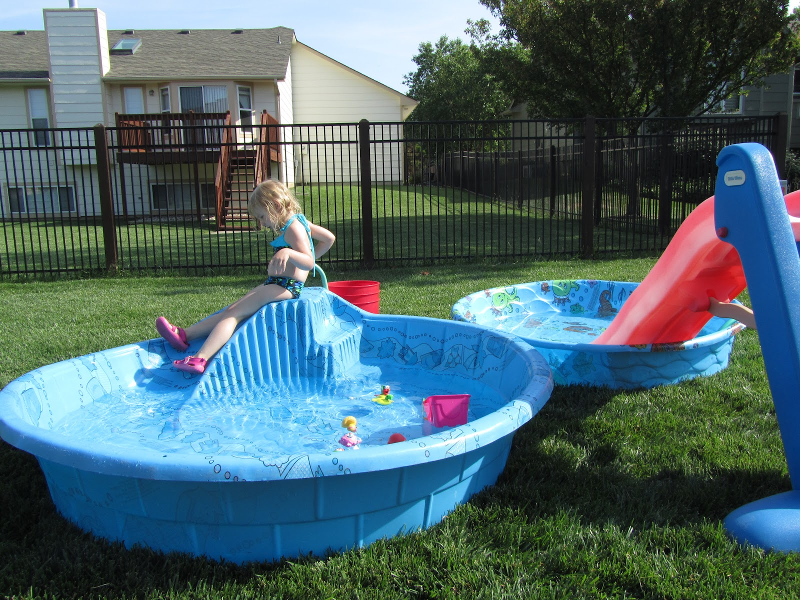 [pics of backyard pools]