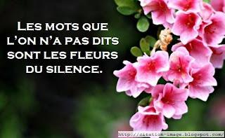 Citation en image sur la silence