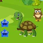 G4K Green Turtle Rescue Game