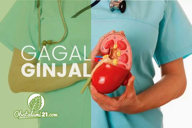 Obat Alami Penyakit Gagal Ginjal Tanpa Cuci darah