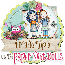 Top 3 Winner of Paper Nest Dolls Challenges