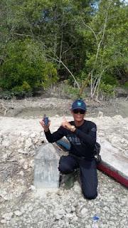 Patroli Hutan Mangrove