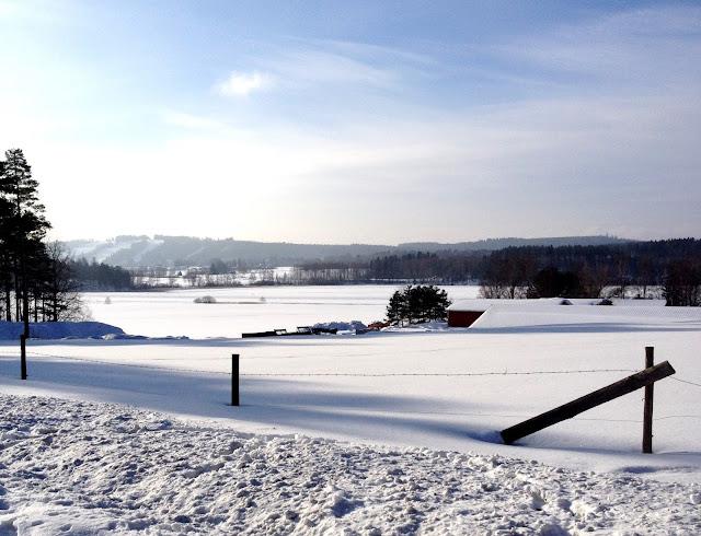 lumi, maisema, talvi
