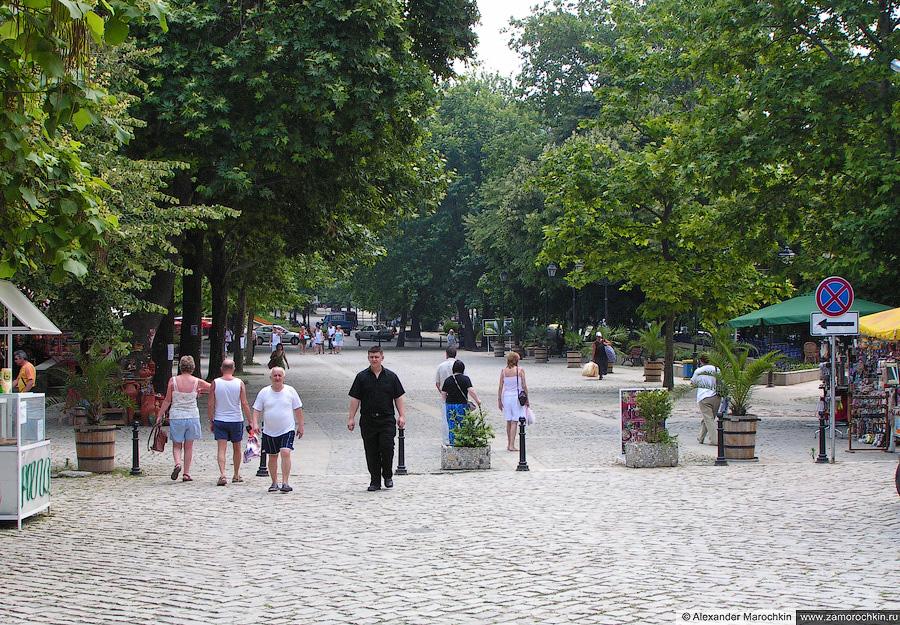Городской парк Созополя   The Town Park of Sozopol
