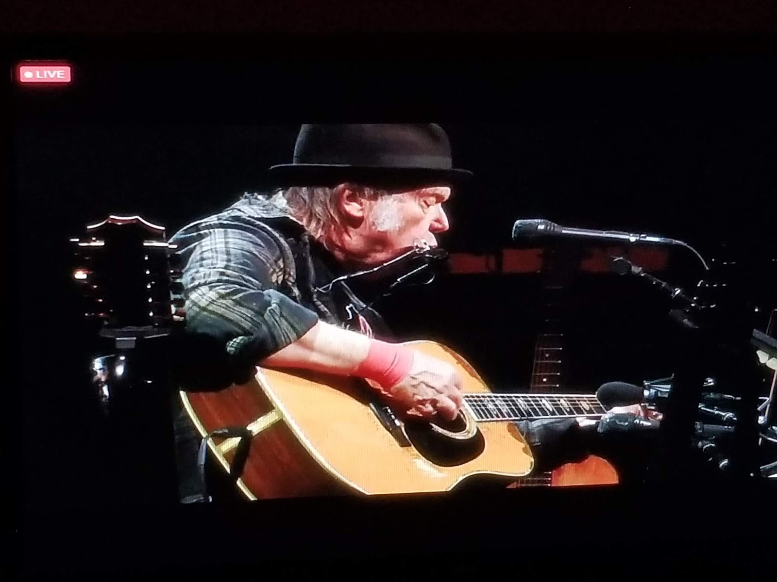 Neil Young News: LIVE STREAM