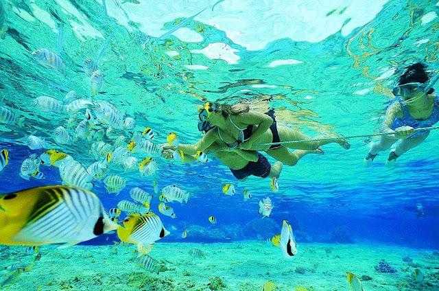 Nusa Lembongan Bali Snorkeling