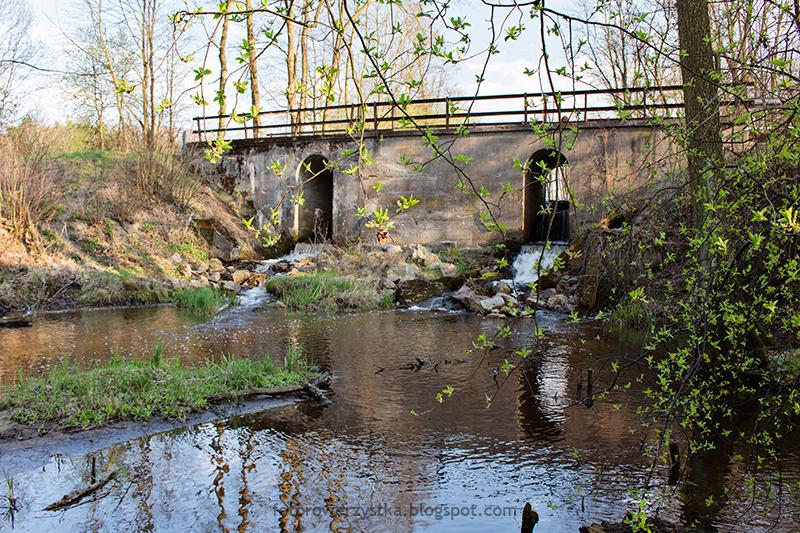 lasy,rowerem,Mielec,puszcza sandomierska,Chyki-Dębiaki, młyn wodny, Babulówka
