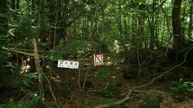 Ada beberapa tempat di Aokigahara yang tidak boleh dimasuki orang