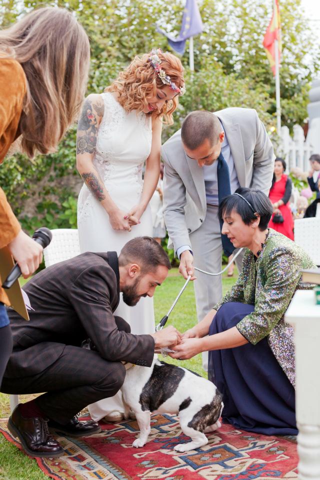 boda original con perro - blog mi boda