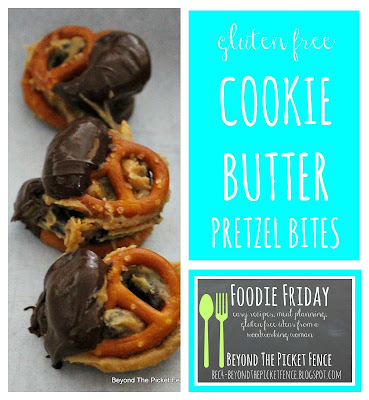 gluten free, cookie butter, pretzels, munchies, gluten free snack, http://bec4-beyondthepicketfence.blogspot.com/2016/04/foodie-friday-gluten-free-cookie-butter.html