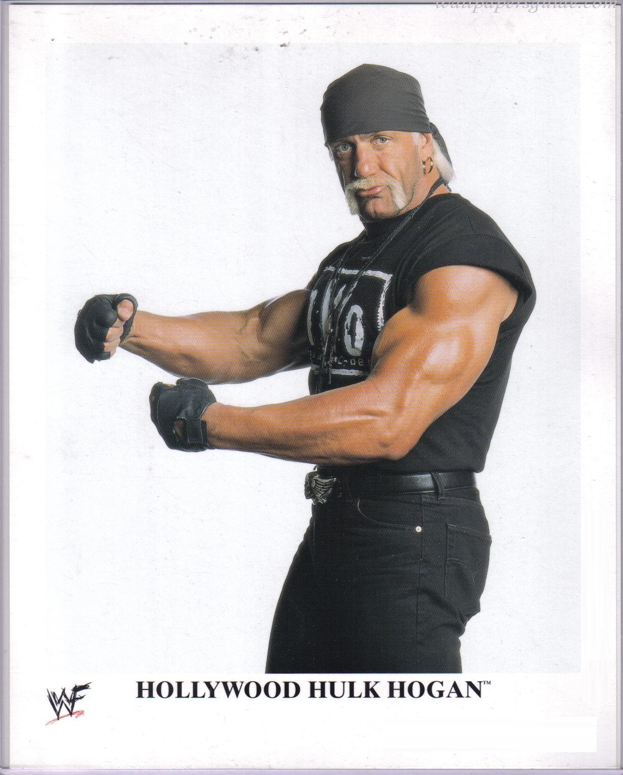Hollywood Hulk Hogan Wallpapers  Cute Girls Celebrity Wallpaper