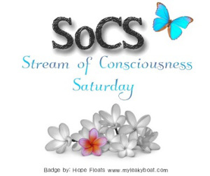 http://lindaghill.com/2016/02/19/the-friday-reminder-and-prompt-for-socs-feb-2016/