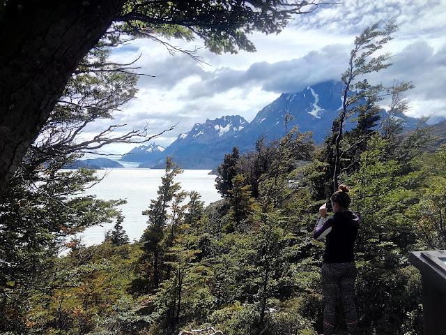 Mirador del lago Grey, Torres del Paine