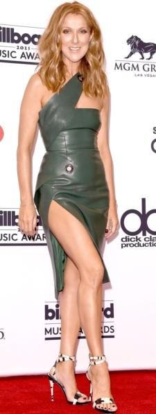 Foto de Céline Dion posando parada