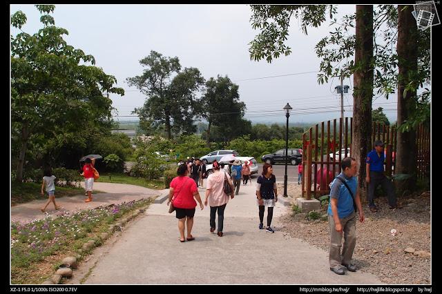 2017-05-07雲林古坑鄉-荷苞山桐花公園