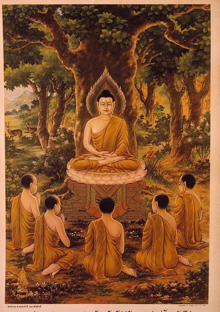 Đạo Phật Nguyên Thủy - Tìm Hiểu Kinh Phật - TRUNG BỘ KINH - Khu rừng