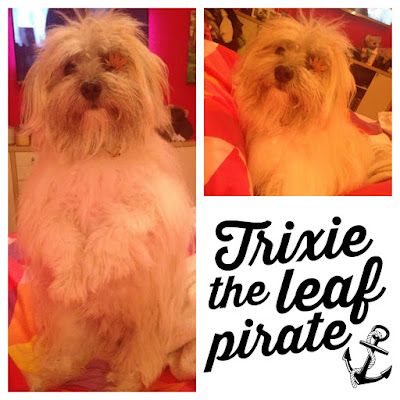 Trixie the Leaf Pirate