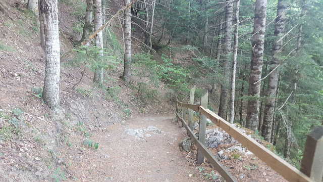 Küre Dağları Milli Parkı Valla Kanyonu Patika Yolları