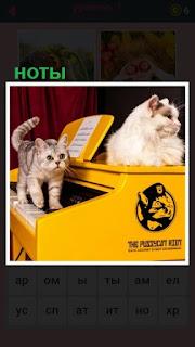 две кошки на пианино ходят и стоят ноты для игры