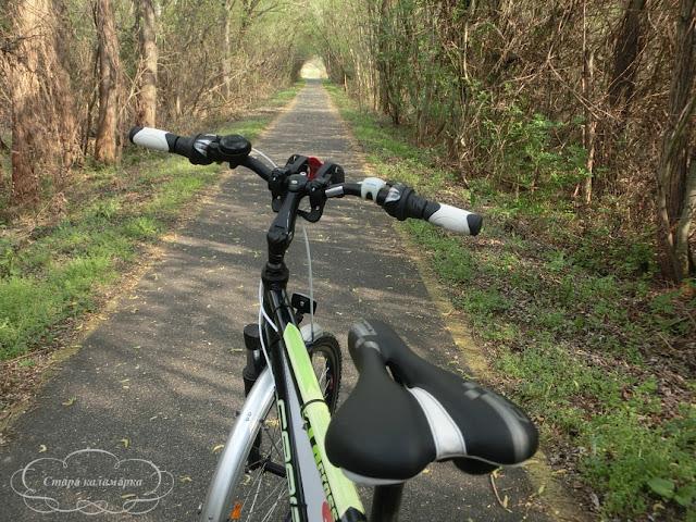Велодорожки на Балатоне, веломаршруты балатона, велопутешествие по Балатону, на велосипеде по балатону