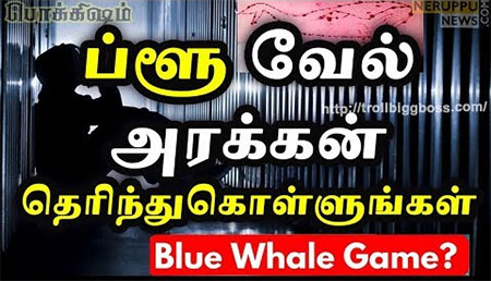 Reasons behind Blue Whale Death | Blue Whale in India