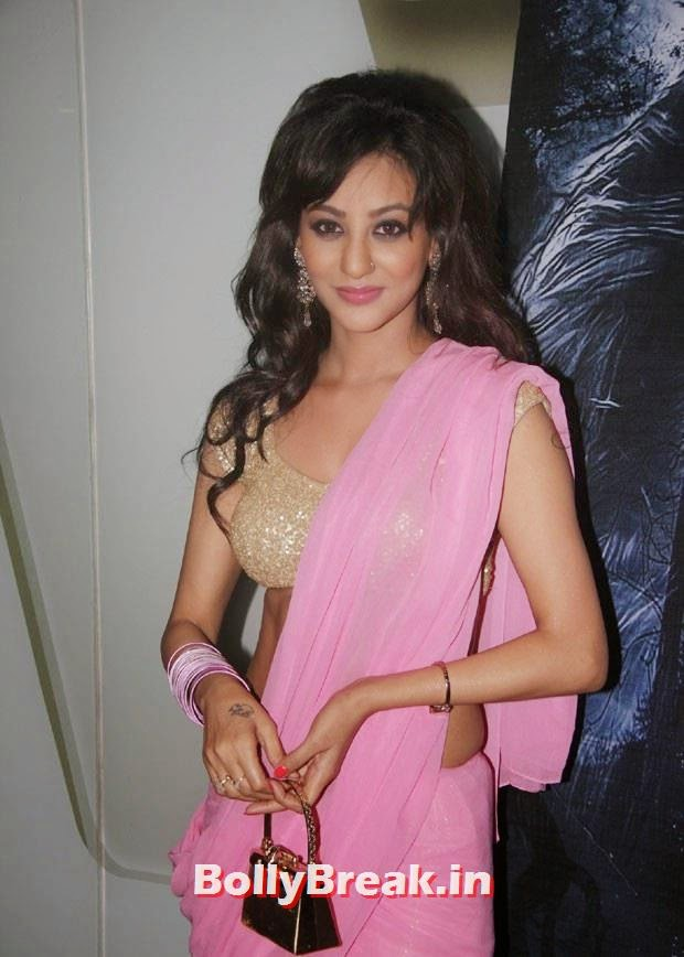 , Vedita Pratap Singh in Saree - Hot HD Images