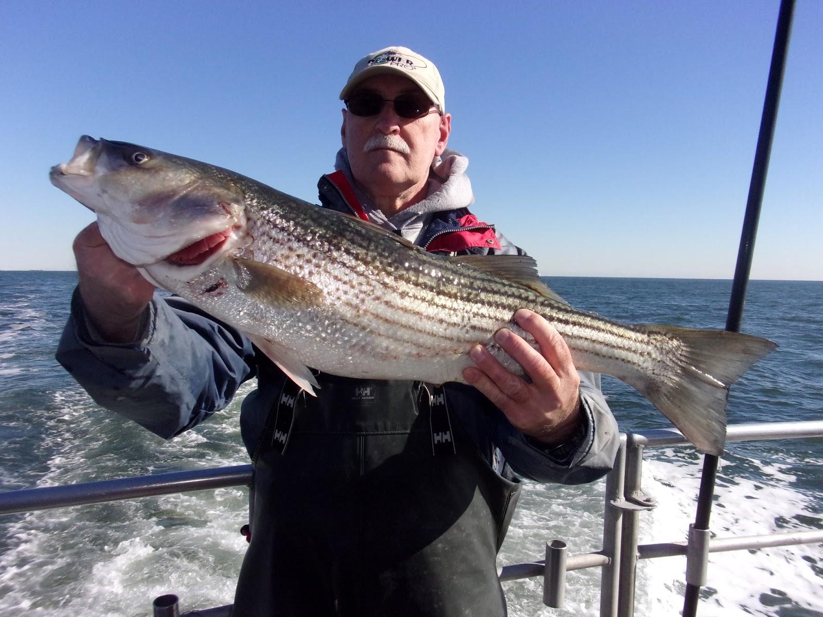 Nj salt fish 2016 10 31 seahunter atlantic highlands for Atlantic highlands fishing report