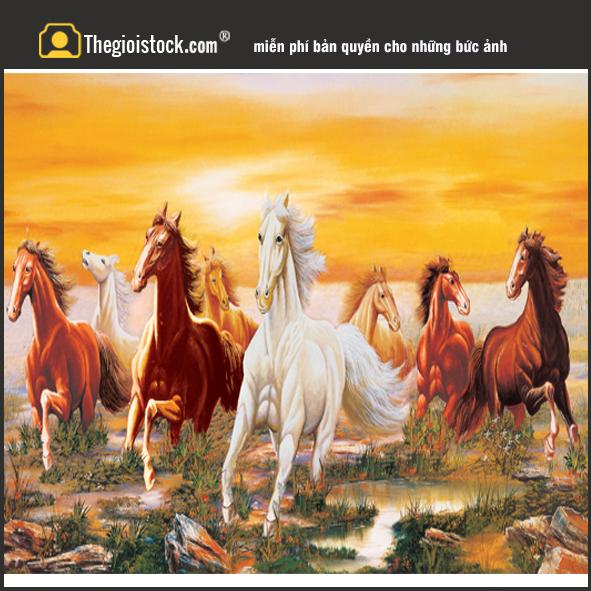 Tranh Bầy Ngựa