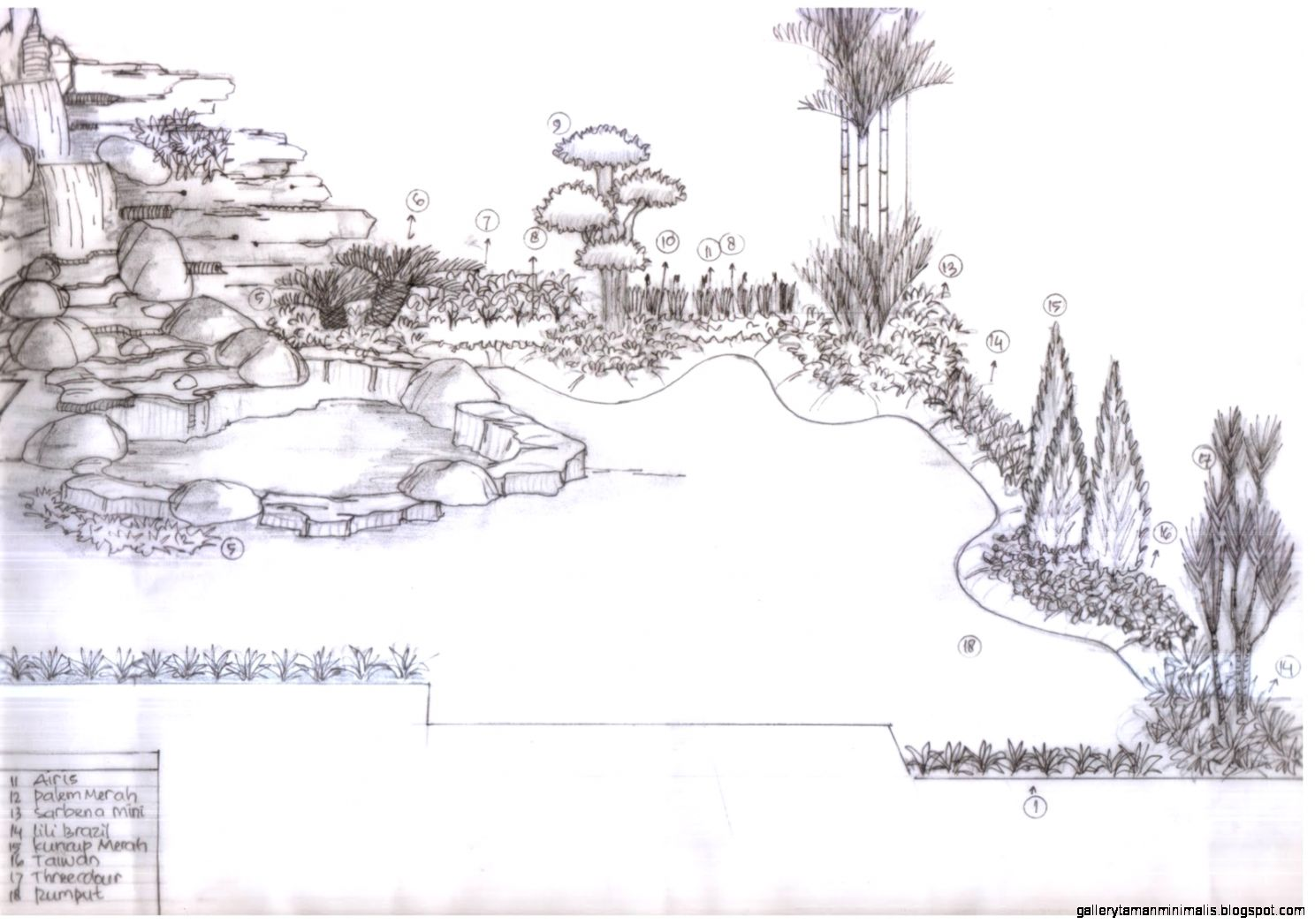 Kumpulan Gambar Sketsa Pohon Taman