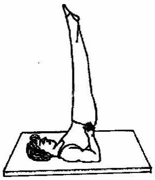 Hareket Eğitimi: Temel Cimnastik Duruşları