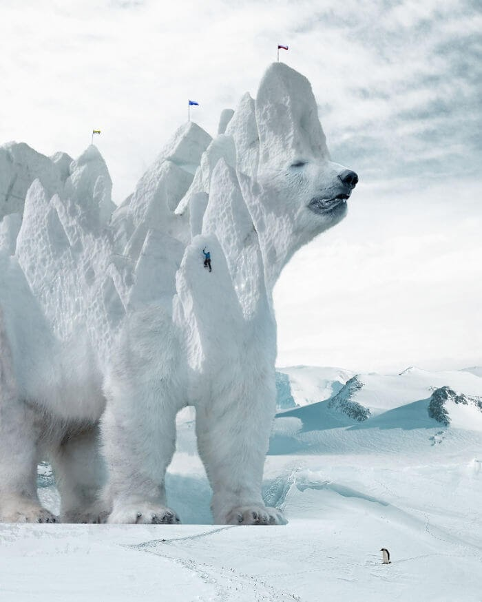 02-Polar-Bear-Ice-Stalowa-Wola-Surreal-Photos-of-Landscapes-and-Architecture-with-Animals-www-designstack-co