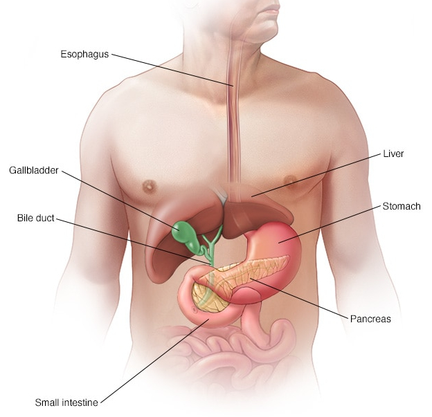 icd 10 Code For Pancreatic Cancer Definition