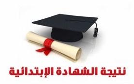 مديرية التربيه والتعليم: نتيجة الابتدائيه محافظة القاهره 2014 الترم الثانى