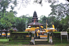 Pura Pucak Bukit Sinunggal merupakan salah satu Pura Dang Kahyangan yang  ada di Bali Utara 99159ea130