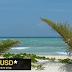 Terreno para Eco-turismo Quintana Roo [ Venta ]