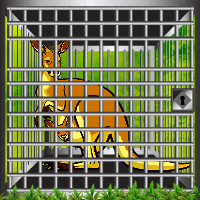Games2rule Green Woods Kangaroo Rescue Walkthrough