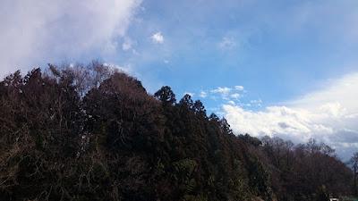 谷津の林と南の空