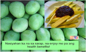 """Just the thought of green mangoes coupled with spicy shrimp paste called """"bagoong"""" is enough to make you long for it right away. What more when it's placed in front of you? Well, actually, both ripe and unripe mangoes - the """"king of fruits"""" - are popular all year round and we can only wish it's available all the time. The sweet ripe mangoes are loved by everyone, I guess. Who could resist this delicious and succulent fruit which has so many benefits aside from its yummy taste?  On the other hand, the green and unripe mangoes may not cater to everyone's taste buds but still, especially when it's freshly picked, unripe mangoes are so mouth-watering to many whether it's eaten as it is, with 'bagoong', salt and chili, soy sauce or sugar.   But aside from these green mangoes being so mouth-watering, do you know that there are benefits from eating such also? True, not just the ripe ones are good for us.  Benefits from unripe mangoes:  When eaten with salt, unriped mangoes helps to prevent the excessive loss of water from the body and helps to quench our thirst, right. That means it also protects us from the adverse effects of very high temperature. A mango drink serves as an effective remedy for heat exhaustion and heat stroke. It prevents the excessive loss of sodium chloride and iron during hot summer months due to excessive sweating.  Unriped mangoes is rich with pectin and when mixed with honey and salt, it is highly beneficial in treating gastro-intestinal disorders, such that eating one or two small tender mangoes (young mango with seed not fully formed yet) with salt and honey has been found to be very effective for indigestion, summer diarrhea, morning sickness, chronic dyspepsia, dysentery, piles, and constipation. Just wow.  Perhaps this is why some pregnant women crave for green mangoes; their body telling them it's good to fight morning sickness.  The green mango is valuable in blood disorders too because of its high vitamin C content; it increases the elastic"""