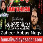 https://www.humaliwalyazadar.com/2018/09/zaheer-abbas-naqvi-nohay-2019.html