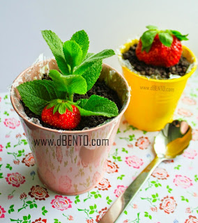 cheese cake oreo in pot plus strawberi
