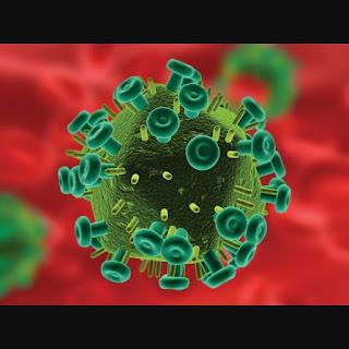 PENGERTIAN KLASIFIKASI VIRUS ADN DAN ARN