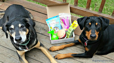 2 rescue dogs pooch perks box
