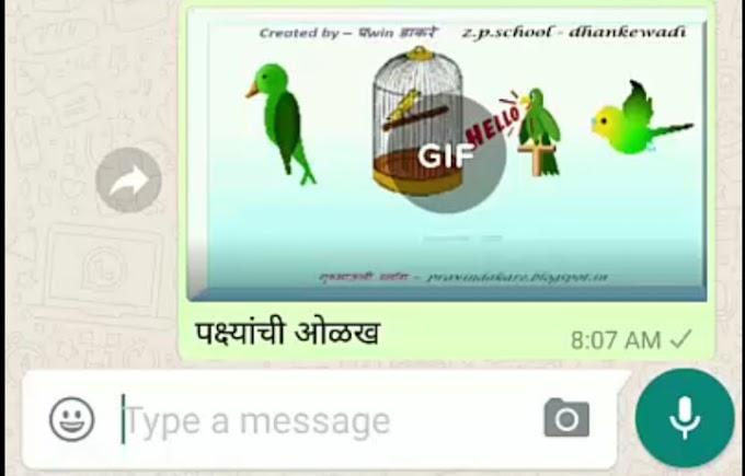 व्हाॅट्सपवर Video ची GIF इमेज कशी शेअर करायची?